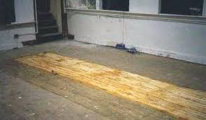 removing tile glue from wood floor step 1 how to remove old tile adhesive from wooden