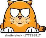תוצאת תמונה עבור cartoon illustration of a angry cat