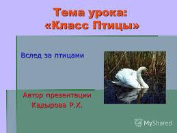 Презентация на тему Презентация к уроку биологии класс на  1 Тема урока Класс Птицы Вслед за птицами Автор презентации Кадырова Р Х