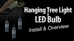 hanging tree light led light bulb install overview by total outdoor lighting you