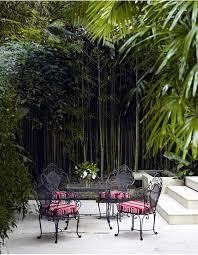 Small Picture Yes Bamboo garden do at home important garden design ideas