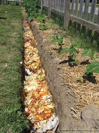 C 12 Composting Tips You Should Know  Organic Gardening Gardens And  Vegetable Garden