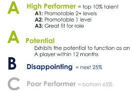 Topgrading Chart A Practical Definition Of A Player Topgrading