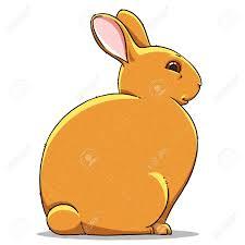 Funny Cartoon Cute Cool Fat Rabbit Illustration Stock Photo ...