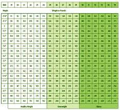 Weight Chart Height To Weight Chart Health Chart Weight