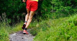 Villnöss Dolomiten Run - 22 KM › brixenmarathon.com
