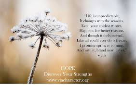 Hopeful Quotes Cool Hopeful For What's To Come