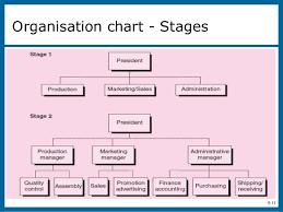 The Organizational Plan