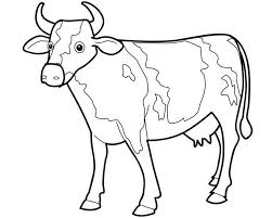Small Picture Animal Cow Coloring Pages Animal Coloring pages of