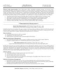 Resume Of Sales Representative Resume Sales Representative Examples
