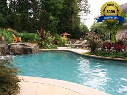 backyard pools and landscaping. night lighting pool award awards backyard pools and landscaping