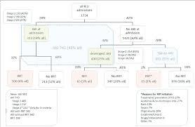 Patient Flow Chart Aki Acute Kidney Injury Cr Creatinine