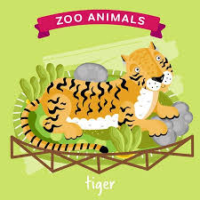 zoo animals in cages clipart. Modren Zoo Vector  Zoo Animals Series Animal In A Cage Tiger Illustration  Cartoon Character Animal Inside In Cages Clipart I