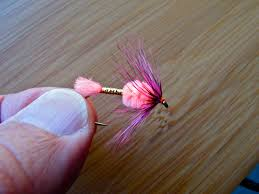Egg Pattern Flies Beauteous Jay's Thoughts On Sea Run Cutthroat Fly Patterns Fishing