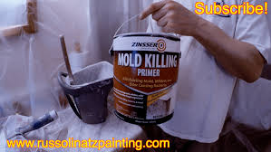 remove mold from bathroom ceiling. How To Kill Mold And Mildew Stains On A Shower Ceiling (Part 2) - Zinsser Killing Primer YouTube Remove From Bathroom O