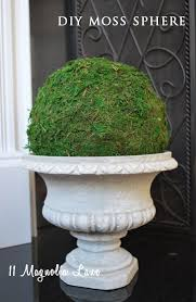 Decorative Moss Balls Michaels