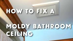bathroom decor charming photos for how to get rid of mold on walls