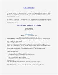 Flight Attendant Resume Sample Samples | Business Document