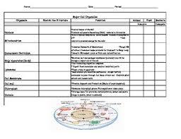 Cell Structure Chart Cell Structure Chart