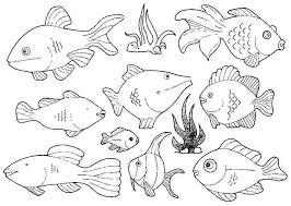fish coloring pages to print fish printable coloring pages fish printable coloring pages coloring fish fish