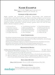areas of expertise for customer service entry level customer service resume objective gordame11 info