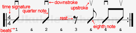 Strumming Patterns For Ukulele Extraordinary How To Read Strumming Patterns Learn To Play Ukulele Ukulele Tabs