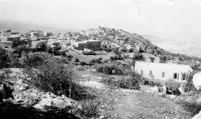 القرى الفلسطينه _الجلمة