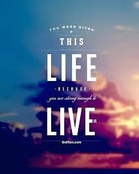 Famous Short Life Quotes Impressive Short Quotes To Live By Stunning Famous Short Quotes About Life Best