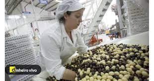 Fábrica de chocolates de Vila do Conde aumenta produção e reforça vendas