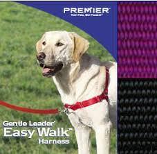 Cheap Easy Walk Harness Sizing Find Easy Walk Harness