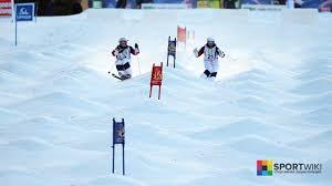 Фристайл лыжный спорт описание история дисциплины могул