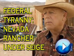 Image result for cliven bundy