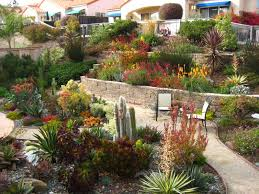 Small Picture Succulent Garden Designs Markcastroco