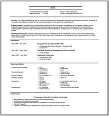 Resume Meaning Delectable What Is Resume Meaning Of Resume Big Objective For Resume Resume