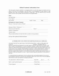 Child Medical Consent Form For Grandparents Grandparents Medical Consent Form Child Medical Authorization Forms