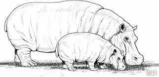 Small Picture Hippopotamus Coloring Page for Kids