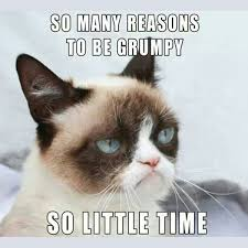 16 of the Best Grumpy Cat Memes - Catster via Relatably.com