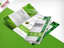 Free 3 Fold Brochure Template Psd Freebie Nature Tri Fold Brochure