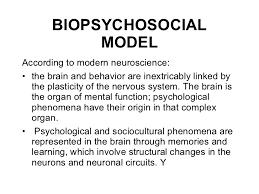 biopsychosocial biopsychosocial