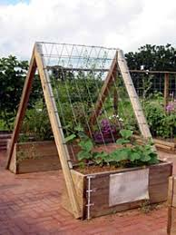 Small Picture Vegetable Garden on deck Cucumber Secret hiding places and Gardens