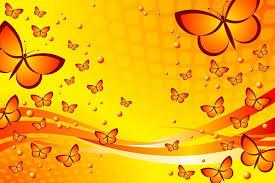 1440x960 erfly background wallpaper 7029678 1600x1000 yellow