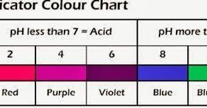 Red Cabbage Juice Indicator Chart Red Cabbage Indicator Color Chart Www Bedowntowndaytona Com
