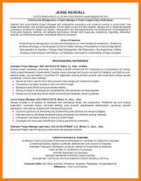 Assistant Project Manager Executive Director Sample Resume
