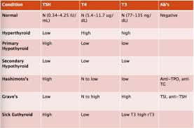 Endocrinology Thyroid Slides Naturopathic Medicine 7405