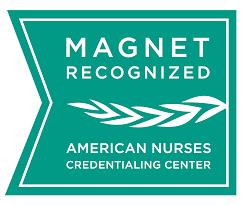Image result for magnet logo