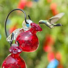 pixie hanging glass hummingbird feeder