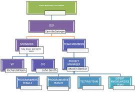 Team Project Management Plan