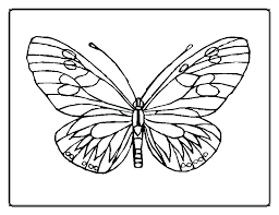 Hungry Caterpillar Coloring Page Hungry Caterpillar Coloring Page