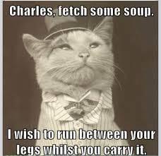 I Can Haz Best Funny Cat Memes?! | PressRoomVIP - Part 7 via Relatably.com