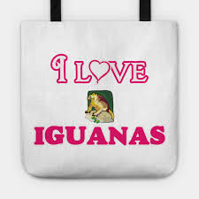 I Love Iguanas